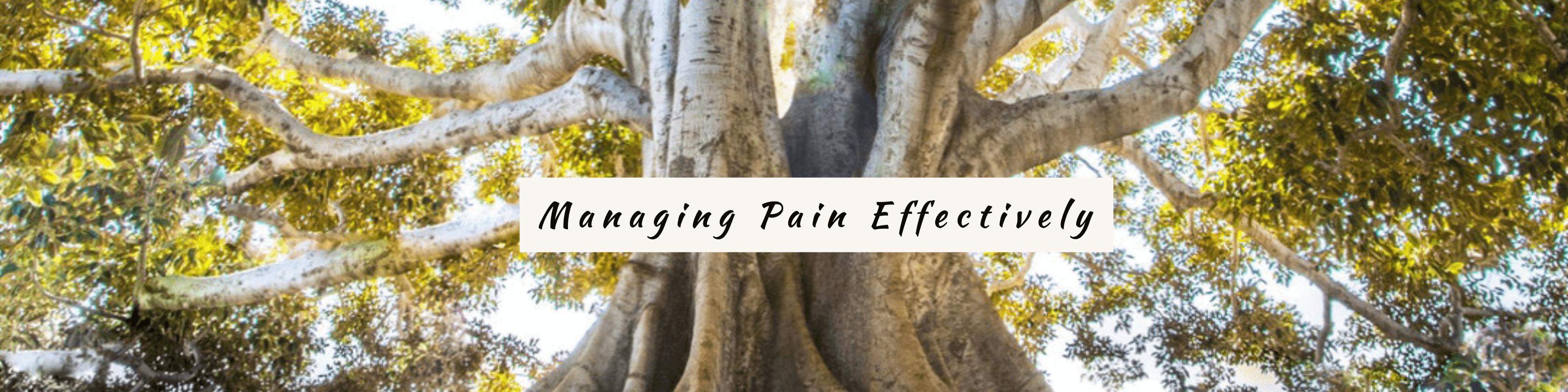 pain log