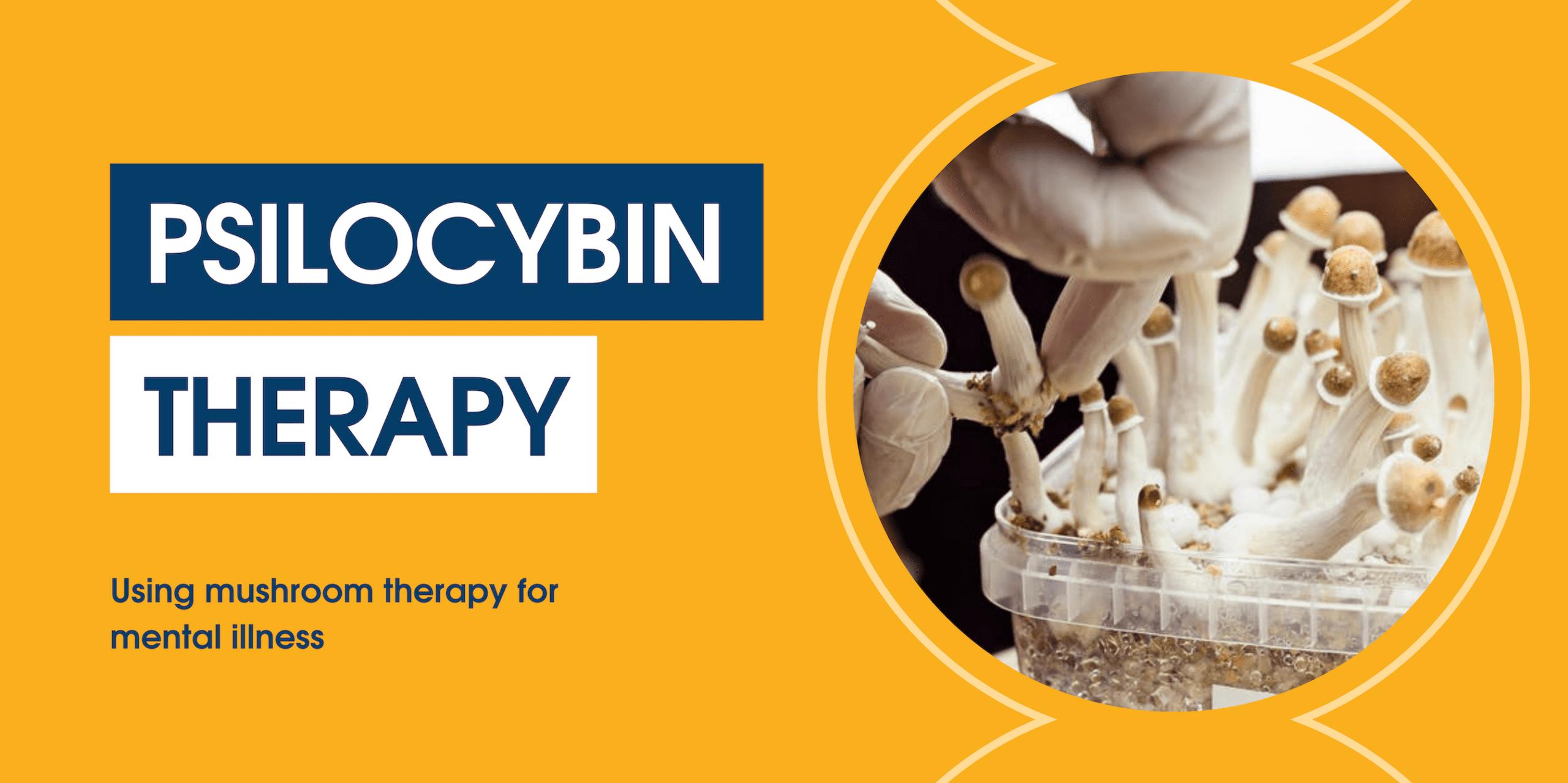 Psilocybin Therapy